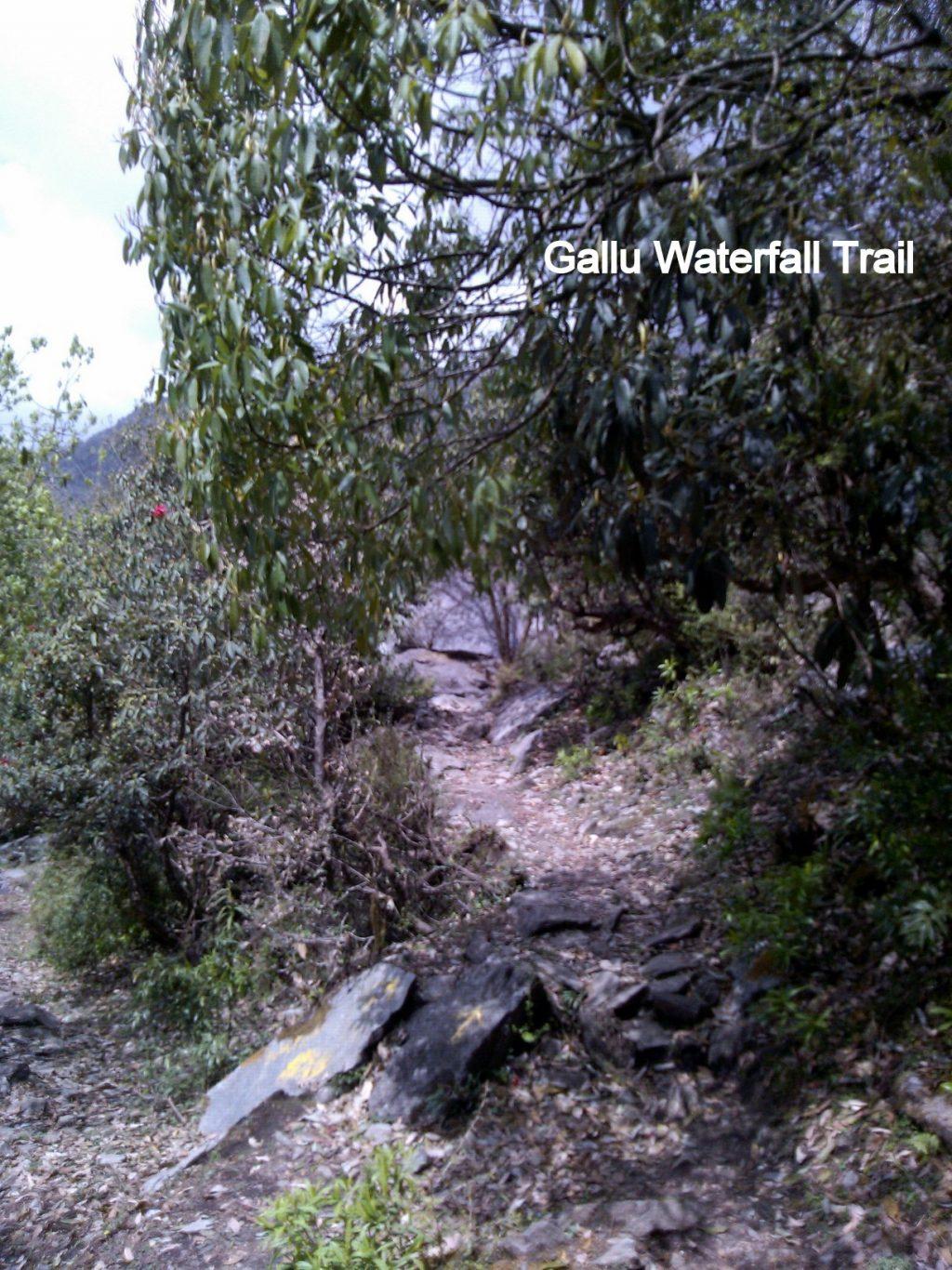 Gallu Waterfall Trail